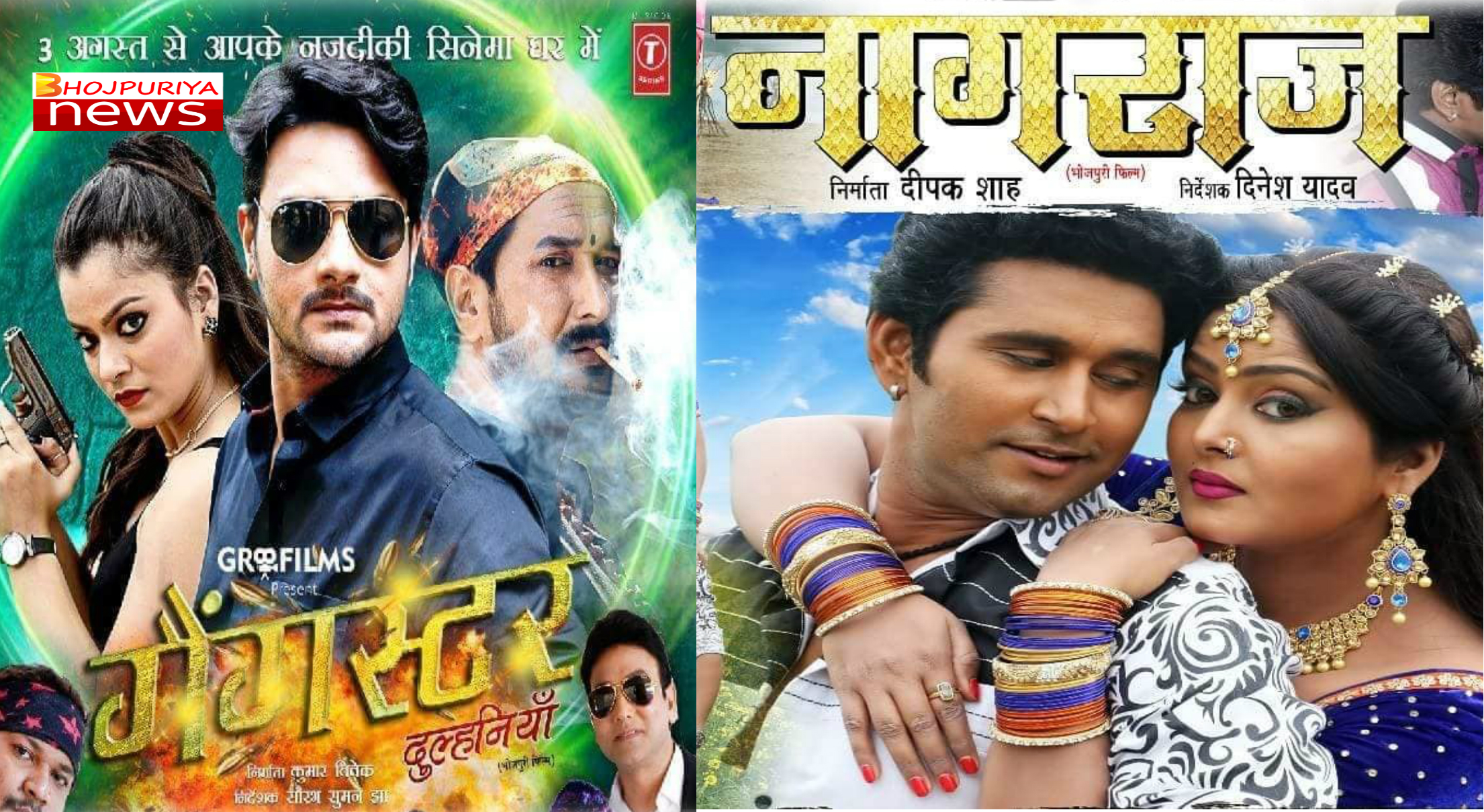 Bhojpuri's two new flavored films Nagraj and Gangster Dulhania